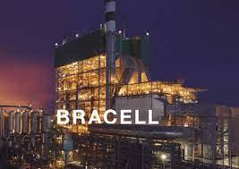 Bracell: Conheça essa Potência Mundial na Produção de Celulose! | AgroPós